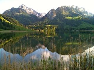 Zwei Kiwanis Clubs helfen Bauern im Schwarzsee Gebiet